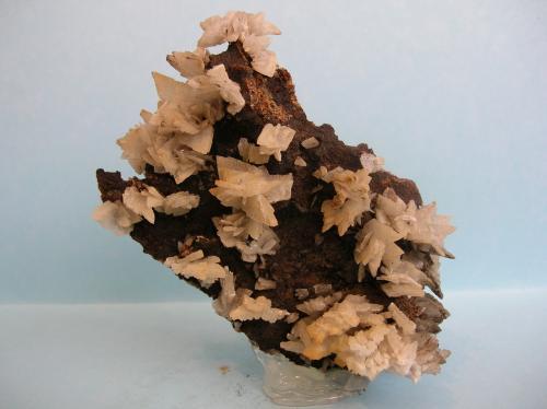 Baritina Mina La Morena, El Gorguel, Sierra Minera de Cartagena-La Unión, Cartagena, Murcia, Región de Murcia, España 9 x 8,5 cm (Autor: Pedro Conesa)