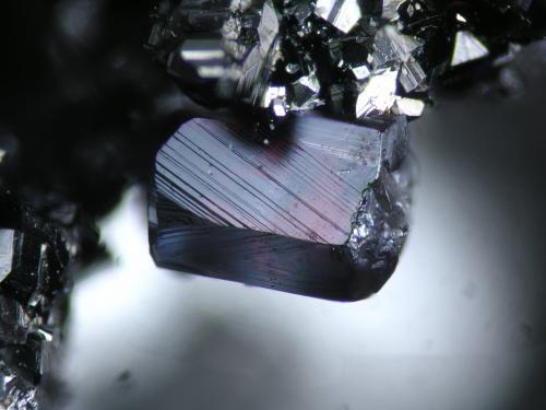 Pyrargyrite San Jose mine, San Jose del Progreso, Oaxaca, Mexico FOV 2 mm (Author: Cesar M. Salvan)