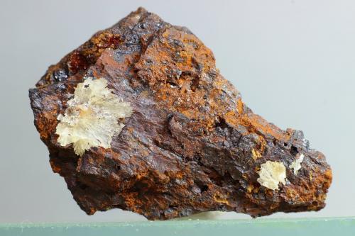 Austinita<br />Distrito Gold Hill, Condado Boulder, Colorado, USA<br />39x26 mm<br /> (Autor: Juan Espino)