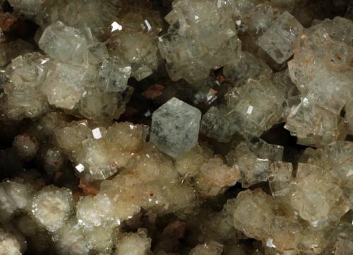 Boracita y Hilgardita<br />Mina Boulby, Loftus, Yorkshire, Inglaterra / Reino Unido<br />Encuadre de 6,74mm. Cristal de 0,93mm<br /> (Autor: Oscar Fernandez)