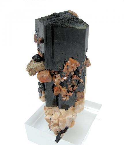 Aegirine, zircon, orthoclase, parisite-(Ce) Mount Malosa, Zomba District, Malawi 82 mm x 66 mm. Main crystal: 82 mm tall, 32 mm wide (Author: Carles Millan)