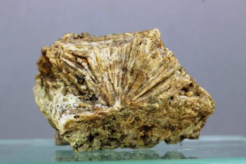 Vesubiana<br />Mines de Can Montsant, Can Montsant (Massís del Montnegre), Hortsavinyà, Tordera, Comarca Maresme, Barcelona, Catalunya, España<br />30x20 mm<br /> (Autor: Juan Espino)