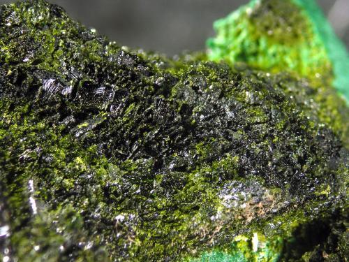 Volborthite<br />Milpillas Mine, Cuitaca, Municipio Santa Cruz, Sonora, Mexico<br />FOV 1.2 cm<br /> (Author: Cesar M. Salvan)
