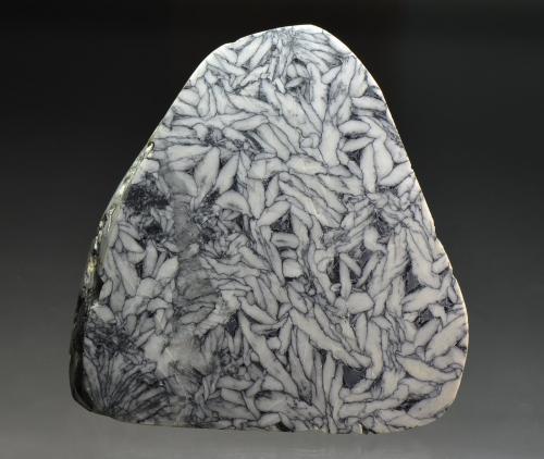Magnesite (var. pinolite)<br />Magnesite deposit, Sunk, Niedere Tauern, Styria/Steiermark, Austria<br />10 x 11 cm<br /> (Author: Martin Rich)