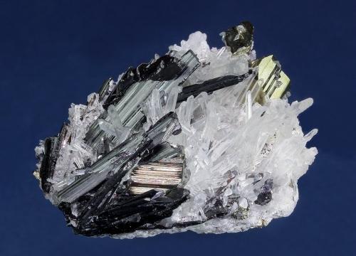 Hübnerite on Quartz with Pyrite<br />Sweet Home Mine, Mount Bross, Alma District, Park County, Colorado, USA<br />38 x 30 x 16 mm<br /> (Author: GneissWare)