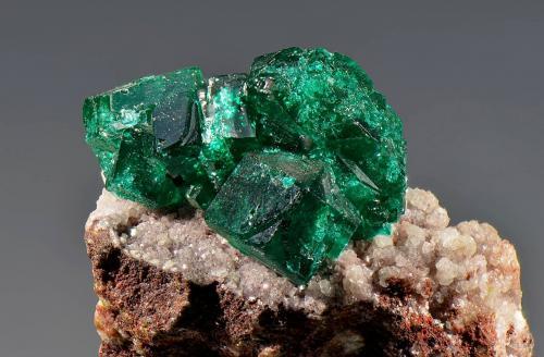 Dioptase<br />Tsumeb Mine, Tsumeb, Otjikoto Region, Namibia<br />25 x 30 mm<br /> (Author: Martin Rich)