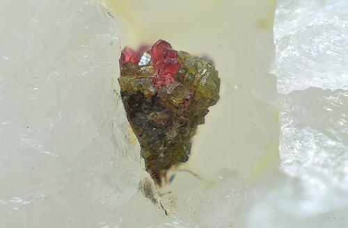 Adamita cobaltífera y austinita.<br />Mina Cogolla Alta, Belalcázar, Córdoba, Andalucía, España<br />Campo de visión de 4 mm.<br /> (Autor: Antonio Carmona)