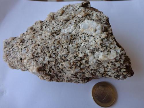 Granodiorita con fenocristales de F-K (Muestra- 1) Cala La Fosca, Palamós, Girona Se trata de una roca que tiene una textura granular de grano mediano- grande (3-6 mm) con megacristales de feldespato potásico. En general, el color original en roca fresca es gris, sin orientación preferente y que se puede confundir fácilmente con el granito. (Autor: germanvet)