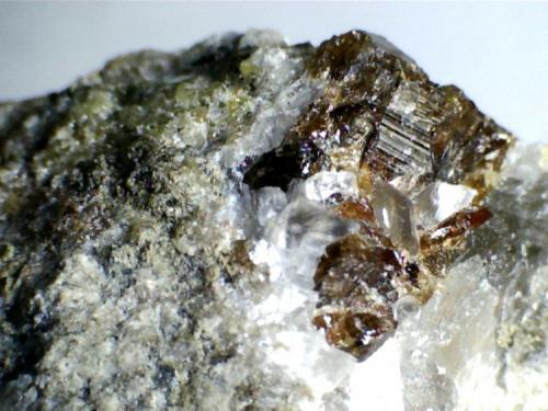 Carbonatita: más cristales de vesubianita (misma roca). Cove Creek exposure, Magnet Cove, Hot  Spring County, Arkansas (Estados Unidos) 20X (Autor: prcantos)