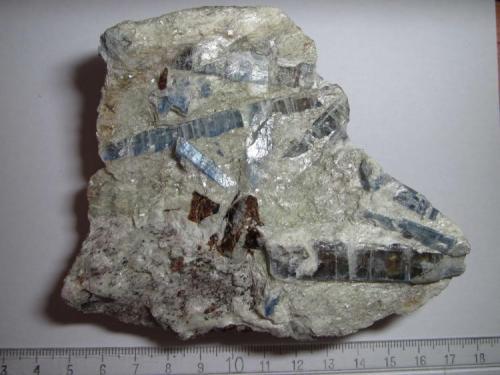 Micaesquisto de cianita Pizzo Forno, Ticino, Suiza 11x9 cm. Espectacular esquisto micáceo con grandes cristales de cianita (o distena) de un azul intenso.  En la matriz aparecen la paragonita (mica clara rica en sodio) y la biotita (escamas abajo a la izquierda).  Se distingue un cristal seccionado de estaurolita, de color rojizo. (Autor: prcantos)