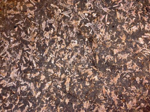 Andesita con fenocristales mostrando textura gráfica. Parece que hay cierta recristalización debida a metamorfismo. CdV: 40 cm (Autor: Josele)
