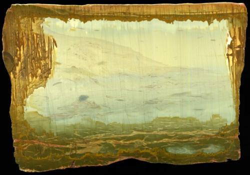 Caliza (variedad paesina)<br />Valdarno (Val d'Arno), Provincia Arezzo, Toscana, Italia<br />18 cm<br /> (Autor: marco campos-venuti)