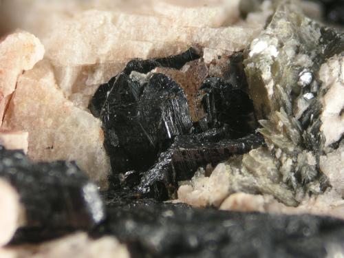 Columbite-Fe<br />Senhora da Assunção Mine, Aldeia Nova, Ferreira de Aves, Sátão, Viseu District, Portugal<br /><br /> (Author: Cesar M. Salvan)