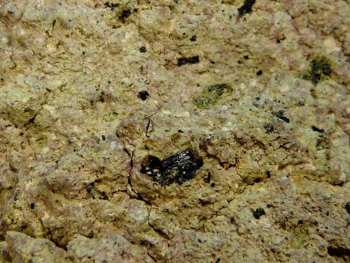 Andesita con hornblenda<br />Cabo de Gata, Níjar, Comarca Metropolitana de Almería, Almería, Andalucía, España<br />10 x 7 x 5 cm.<br /> (Autor: Felipe Abolafia)