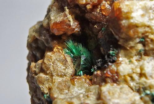 Malaquita y granate<br />Mines de Can Montsant, Can Montsant (Massís del Montnegre), Hortsavinyà, Tordera, Maresme, Barcelona, Catalunya, España<br />Encuadre 2 x 1,5 cm aprox.<br /> (Autor: heat00)