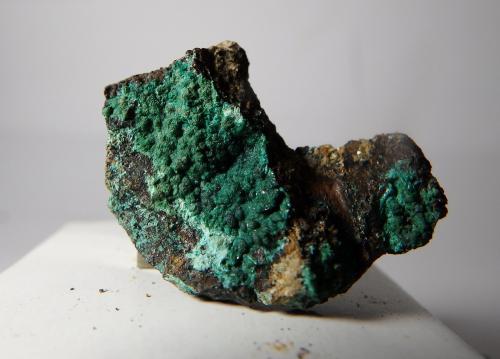 Malaquita y Magnetita<br />Mines de Can Montsant, Can Montsant (Massís del Montnegre), Hortsavinyà, Tordera, Comarca Maresme, Barcelona, Catalunya, España<br />2,8 x 2,1 x 1 cm<br /> (Autor: heat00)
