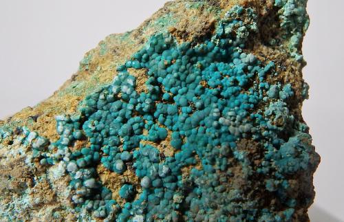 Crisocola<br />Mines de Can Montsant, Can Montsant (Massís del Montnegre), Hortsavinyà, Tordera, Maresme, Barcelona, Catalunya, España<br />encuadre 3 x 2 cm aprox.<br /> (Autor: heat00)