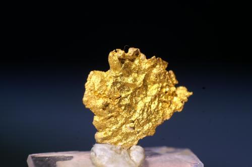 Oro<br />Valle Grass, Distrito Nevada City, Condado Nevada, California, USA<br />Foto 2 cm ancho<br /> (Autor: chatero15)