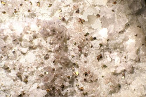 Calcopirita sobre Fluorita<br />Mina Matagalls (Minas de Sant Marçal), Sant Marçal, Viladrau, Comarca Osona, Girona / Gerona, Catalunya, España<br />Foto 2 cm ancho<br /> (Autor: chatero15)