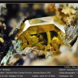 WulfeniteMina Dulcinea de Llampos, Cachiyuyo de Llampos, Provincia Copiapó, Región Atacama, Chilefov 2.5 mm (Author: ploum)
