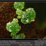 Adamite (variety cuprian adamite)<br />Potosí Mine, Santo Domingo (Francisco Portillo), Santa Eulalia District, Municipio Aquiles Serdán, Chihuahua, Mexico<br />fov 4 mm<br /> (Author: ploum)