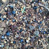 AugitaBarlovento, La Palma, Provincia de Santa Cruz de Tenerife, Canarias, EspañaEntre uno y dos centimetros (Autor: canada)