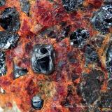 Zincita<br />Sterling Hill, Ogdensburg, Distrito minero Franklin, Condado Sussex, New Jersey, USA<br />Encuadre de la fotografía 15 mm.<br /> (Autor: Rafael Galiana)