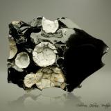 Cristobalita y Fayalita en Obsidiana<br />Monte Chandler, Sweet Home, Condado Linn, Oregon, USA<br />93 x 75 x 49 mm.<br /> (Autor: Rafael Galiana)