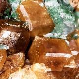 Granate y Malaquita<br />Mines de Can Montsant, Can Montsant (Massís del Montnegre), Hortsavinyà, Tordera, Maresme, Barcelona, Catalunya, España<br />1 cm<br /> (Autor: Obsi)