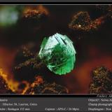 Adamite<br />Hilarion Mine, Hilarion area, Kamariza Mines, Agios Konstantinos, Lavrion Mining District, Attikí (Attica) Prefecture, Greece<br />fov 1.8 mm<br /> (Author: ploum)