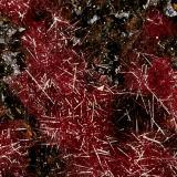Cuprita (variedad calcotriquita)<br />Minas Ray, Zona Scott Mountain, Distrito Mineral Creek, Montes Dripping Spring, Condado Pinal, Arizona, USA<br />Encuadre de la fotografía 10 mm.<br /> (Autor: Rafael Galiana)