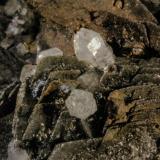 Calcite and Quartz<br />Herja Mine, Chiuzbaia, Baia Sprie, Maramures, Romania<br />FOV 22 mm<br /> (Author: Adrian Pripoae)