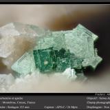 Torbernite and Apatite (Group)Minas Montebras, Montebras, Soumans, Boussac, Guéret, Creuse, Nouvelle-Aquitaine, Francia1.8 mm (Author: ploum)