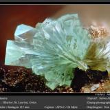 Adamite<br />Hilarion Mine, Hilarion area, Kamariza Mines, Agios Konstantinos, Lavrion Mining District, Attikí (Attica) Prefecture, Greece<br />1.8 mm<br /> (Author: ploum)