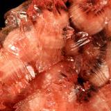Rhodochrosite, Manganite<br />N'Chwaning I Mine, N'Chwaning mining area, Kuruman, Kalahari manganese field (KMF), Northern Cape Province, South Africa<br />64x37x27mm<br /> (Author: Fiebre Verde)