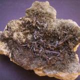 Ferroactinolita-Tremolita (Serie) y Prehnita<br />Cantera Minera I, Cerro de los Serranos, Lebrija, Comarca Bajo Guadalquivir, Sevilla, Andalucía, España<br />10,5 x 10 x 4 cm<br /> (Autor: Antonio Alcaide)