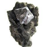 Galena<br />Trzebionka Mine, Trzebinia, Chrzanów District , Małopolskie, Poland<br />Specimen height 4 cm, galena crystal 1,5 cm<br /> (Author: Tobi)