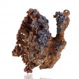 Copper and CupriteMina Poteryaevskoe, Rubtsovskoe, Rudnyi Altai, Altaiskii Kray, Región Siberia Occidental, Rusia16,0x11,0x16,0cm (Author: MIM Museum)