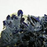 Azurite<br />Tsumeb Mine, Tsumeb, Otjikoto Region, Namibia<br />60x35x15mm<br /> (Author: Heimo Hellwig)