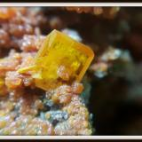 Wulfenite<br />Isfahan Province, Iran<br />4.5 mm<br /> (Author: h.abbasi)