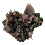 Axinita-(Mn), Epidota<br />Canta, Distrito Canta, Provincia Canta, Departamento Lima, Perú<br />74 mm x 66 mm x 59 mm. Cristal mayor de axinita: 20 mm de anchura<br /> (Autor: Carles Millan)