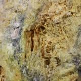 Cervantita<br />Mina María Teresa (Mina Santa Teresa), Parajes Concostura y Argatón, Riaño, Comarca Montaña de Riaño, León, Castilla y León, España<br />5, 5 x 3 cm<br /> (Autor: minero1968)