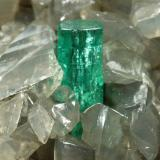 Beryl (variety emerald), Calcite, Dolomite<br />Muzo mining district, Western Emerald Belt, Boyacá Department, Colombia<br />54x53x31mm, xl=5mm<br /> (Author: Fiebre Verde)