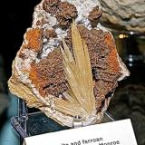 Aragonite and Dolomite (veriety ferroan dolomite) on QuartzAfloramientos antigua Carretera Estatal 37, Bloomington (Norte), Condado Monroe, Indiana, USAAragonite is 7 cm max dimension (Author: Bob Harman)