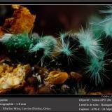 AgarditeMina Hilarion, Zona Hilarion, Minas Kamariza, Agios Konstantinos, Distrito minero Lavrion, Prefectura Attikí (Attica), Greciafov 1.8 mm (Author: ploum)