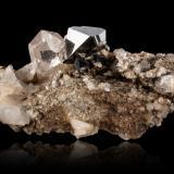Magnetite with QuartzZona Alp Lercheltini, Valle Binn (Binntal), Wallis (Valais), Suiza5,0x4,0x1,5cm (Author: MIM Museum)