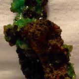 Adamite (variety cuprian adamite)Mina Ojuela, Mapimí, Municipio Mapimí, Durango, México8.89 cm (Author: JC)