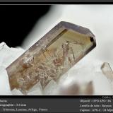 Allanite<br />Trimouns Mine, Luzenac, Ariège, Occitanie, France<br />fov 3.6 mm<br /> (Author: ploum)