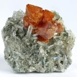 Scheelite, quartz<br />Pari, Kharmang Valley, Kharmang District, Gilgit-Baltistan (Northern Areas), Pakistan<br />60 mm x 50 mm x 27 mm. Main scheelite crystal: 18 mm<br /> (Author: Carles Millan)