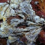 Barita y Siderita (variedad sideroplesita)<br />Canteras de arcilla, La Cañada de Verich, Bajo Aragón, Teruel, Aragón, España<br />115x110 mm.<br /> (Autor: Jesus Franquesa Baucells)